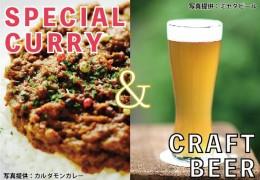 beercurry02